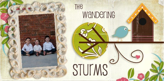 The Wandering Sturms