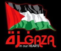 Info Palestina