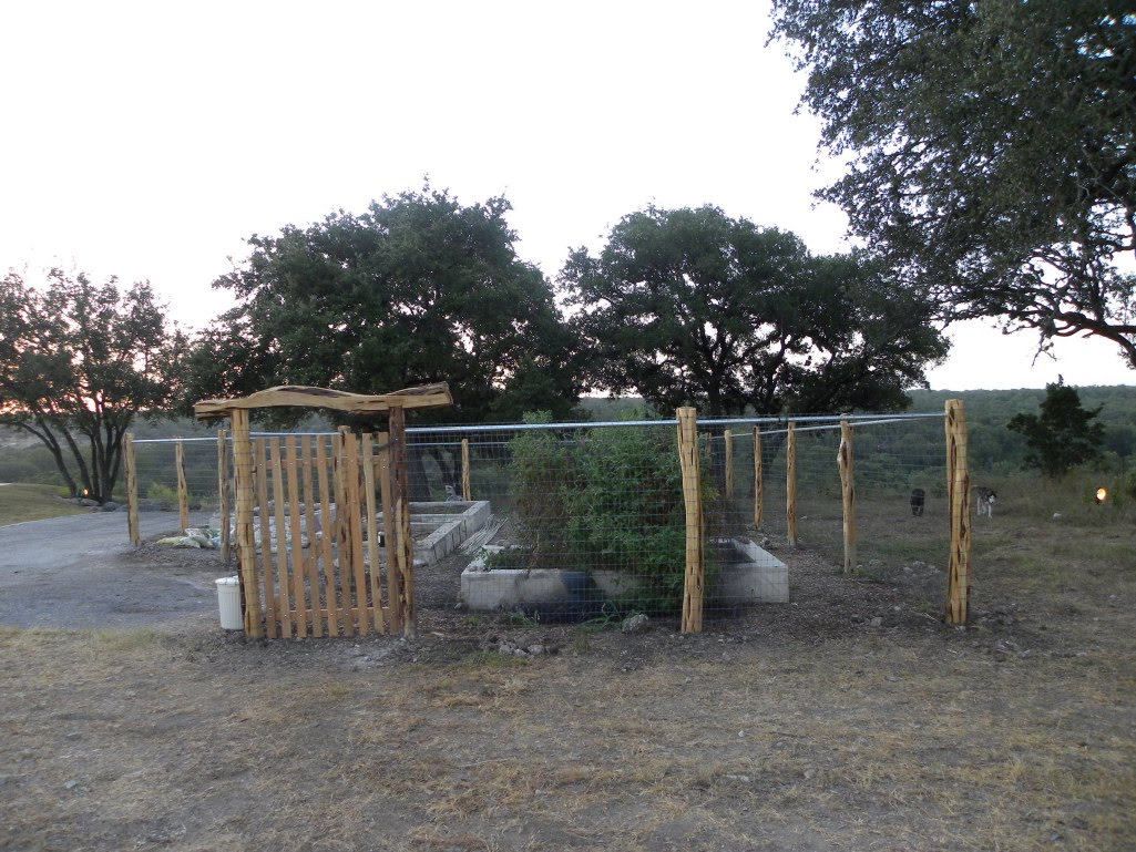 New Backyard Fence : Dianes Texas Garden New Garden Fence