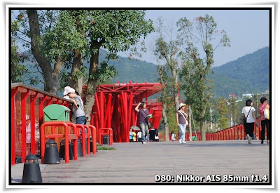 東部華僑城-茶溪谷度假公園-濕地花園(Wetland Garden, Tea Stream Valley, OCT East)