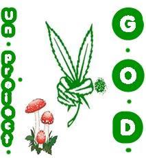 Peace GOD