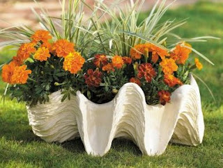 Giant Clam Shell Planter
