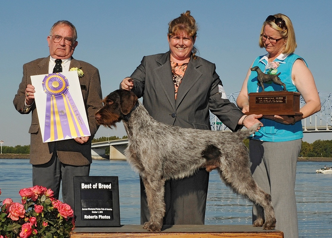 Dog Show Poop 2010 10 03