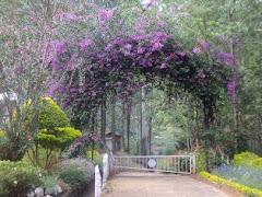 HRS Garden