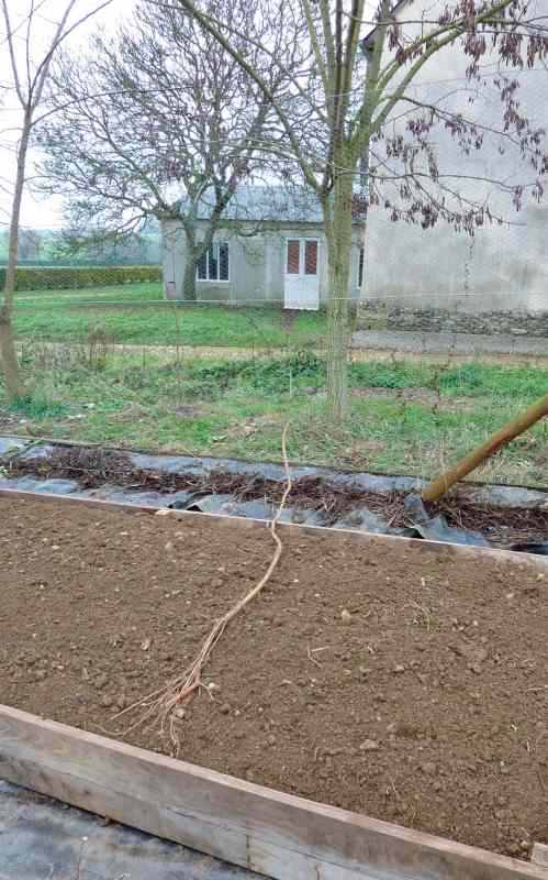 Permaculture in brittany permaculture ideas a help or a for Permaculture bretagne