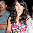 Hansika Motwani in a Event Spicy  Photo Gallery