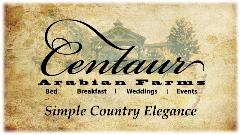 Centaur Arabian Farms Blog
