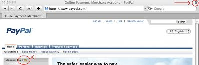PayPal main page in Safari