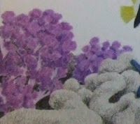 purple soft coral drawing