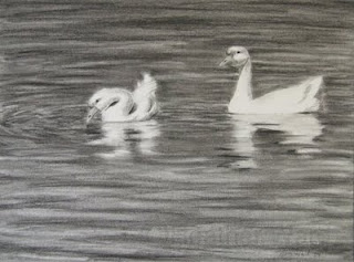 geese charcoal drawing