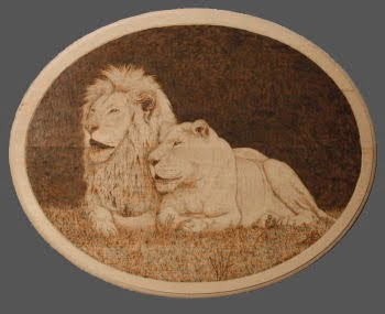 white lions pyrography woodburning drawing