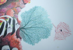 sea fan drawing