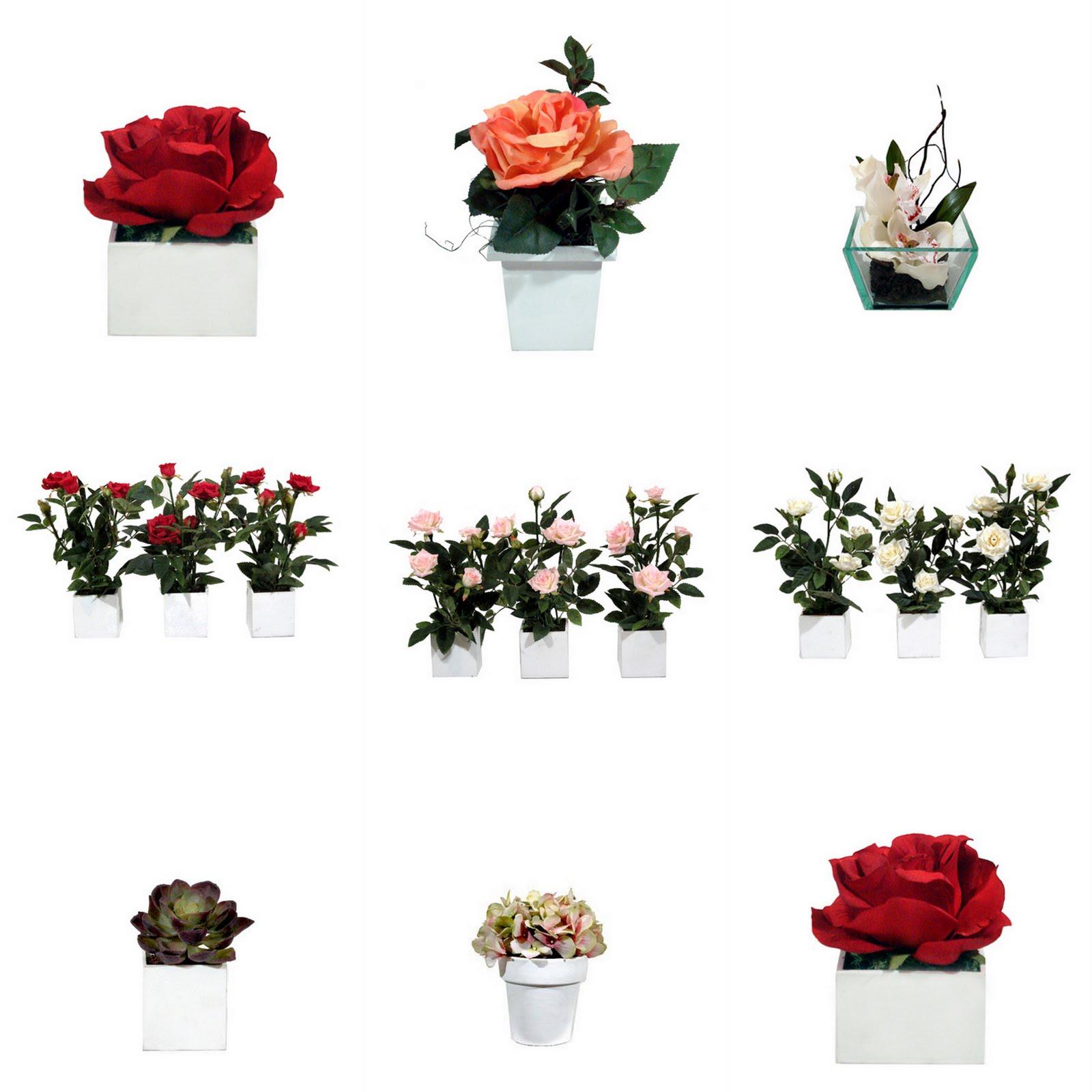 Flores flores muitas FLORES ! #831018 1600 1600