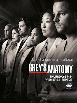 Greys Anatomy – 9X22 temporada 9 capitulo 22