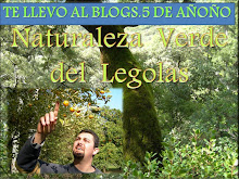 TE LLEVO A MI BLOGS.5