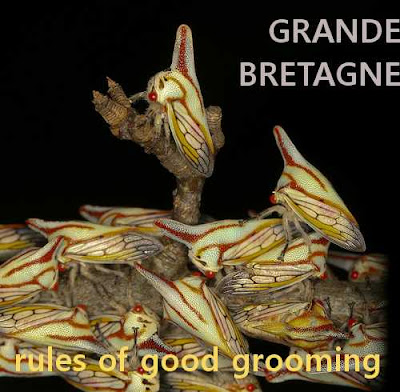 Grande Bretagne - Rules of Good Grooming - kuvitteellinen bändi