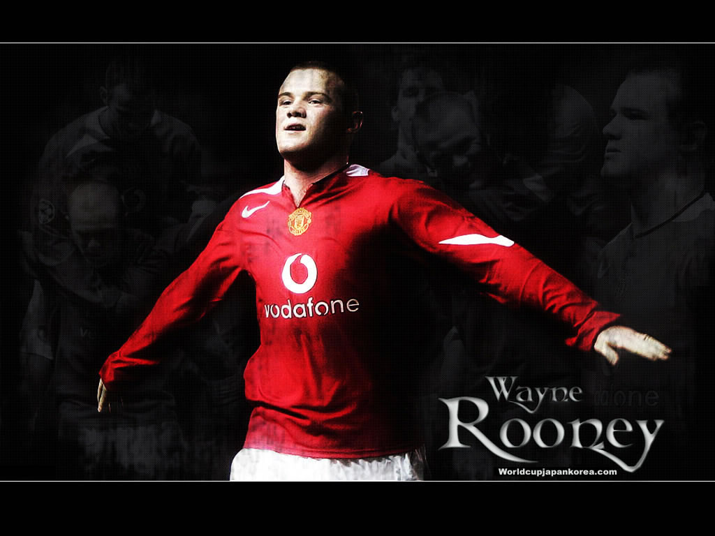 world cup,world cup 2010, South Africa, football, soccer, manchester united wallpaper Roony