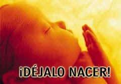 ONG LLAMAN A LUCHAR CONTRA LA PENALIZACIÓN DEL ABORTO