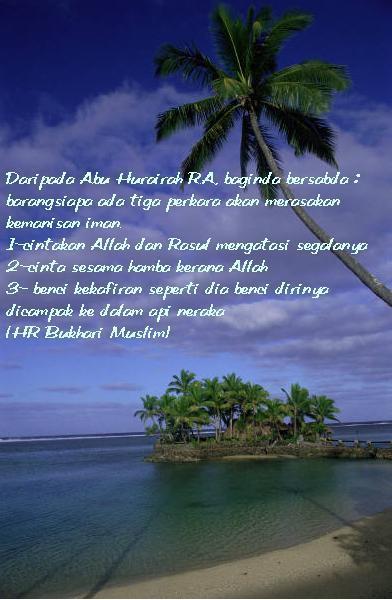 http://3.bp.blogspot.com/_sgeZDMyuap0/SeC2rNb00eI/AAAAAAAAACg/gHAck3eSsHU/S760/12.jpg