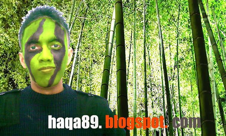 haqa89.blogspot.com