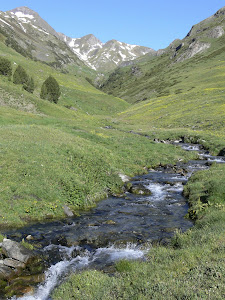 Vall de Vernatar vora Montgarri (Val d'Aran, 16 d'agost del 1883)