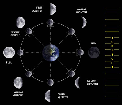 dangling the night's Waxing Gibbous moon. moon phases