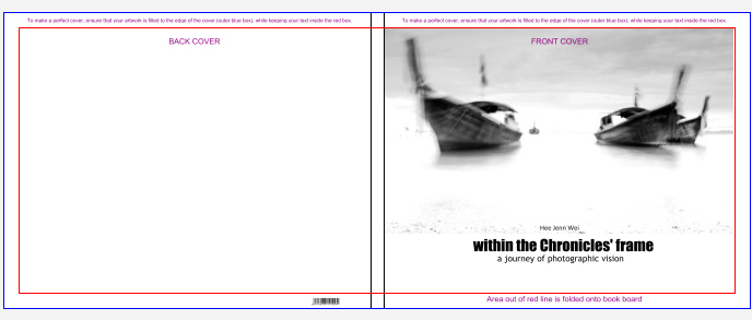 within the frame the journey of photographic vision pdf