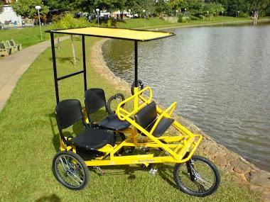Triciclo Elétrico - Familia