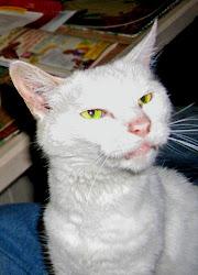 Princess Yeti: RIP