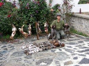 Κυνήγι στην Βουλγαρία