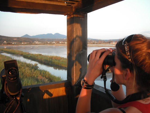 Θερινό πρόγραμμα ενημέρωσης επισκεπτών στη λιμνοθάλασσα Γιάλοβα