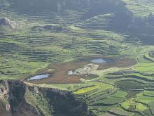 VALLE DEL COLCA-AREQUIPA-PERU