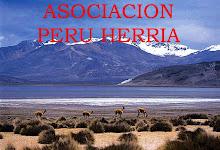 Asociación,ONG en el País Vasco