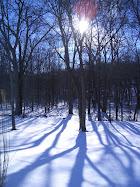 West Light in Winter