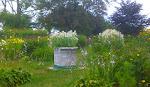 Gardens near the windmill