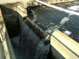EPA Grants Millions for Green Wastewater Projects