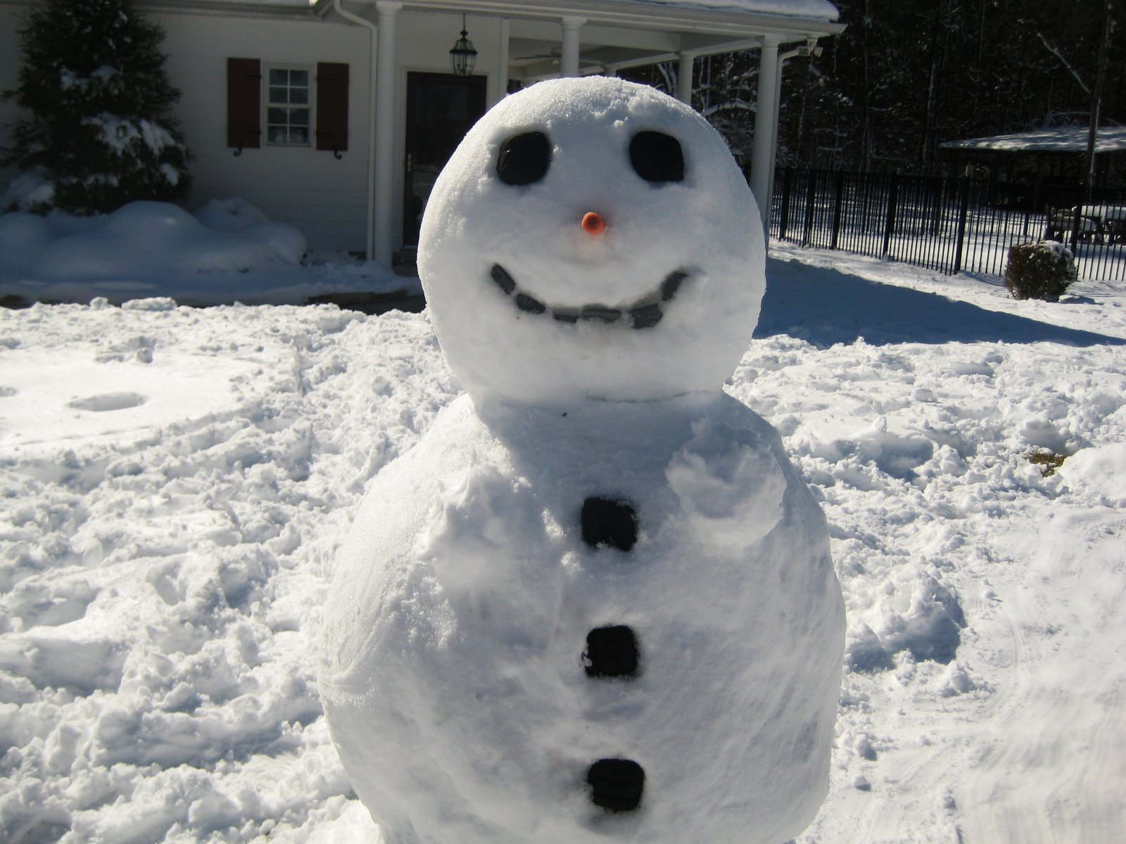 [Snow+]