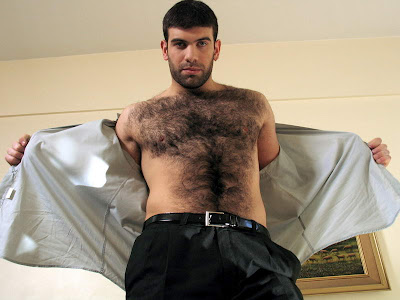 Dodge hairy ben