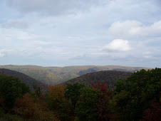 Blue Ridge Mountains in VA.