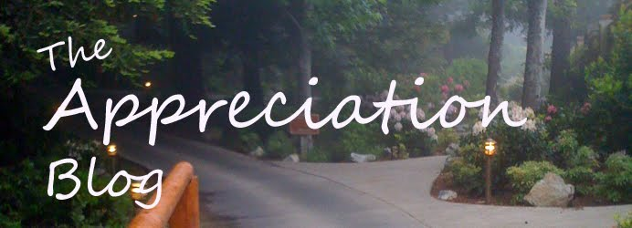 The Appreciation Blog
