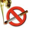 POR LEY NO SE PUEDE FUMAR DENTRO DEL ESTABLECIMIENTO EDUACIONAL