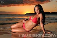 Scarlet American Side-Tie Bikini picture1