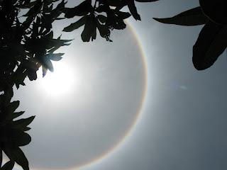 Unique phenomenon The Sun Have The Ring picture pics