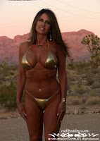 deanna in a Gold Metal Liquid MS Bikini pictures gallery