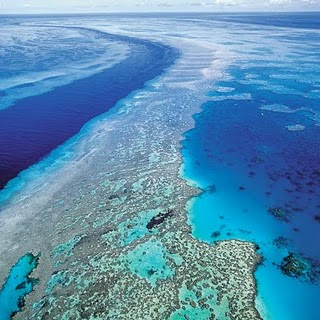 The New 7 (Seven) Natural Wonders of the World The Great Barrier Reef in picture pic photo image gallery