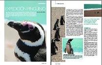 Expedición Pingüino