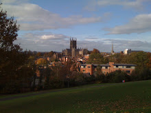Worcester Cathedral from Fort Royal