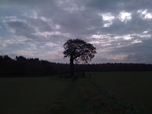 The Royal Oak at Boscobel