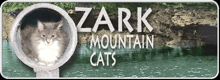 Ozark Mountain Cats