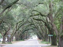 South Boundary Road
